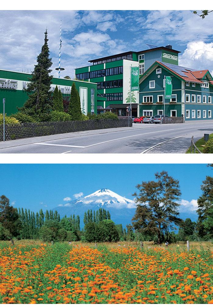 SALUS-Haus headquarters, Germany & Futacoyan herb farm, Chile